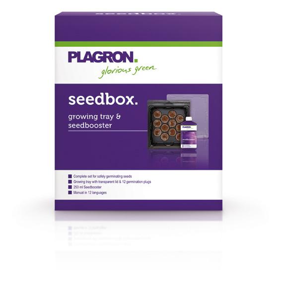 01. Seedbox