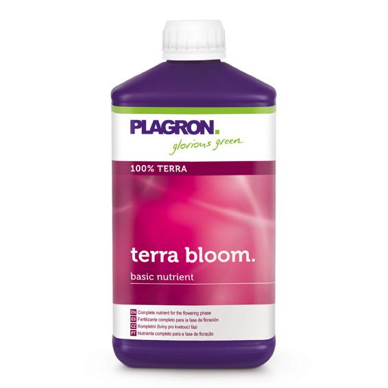 01. Terra Bloom_1l