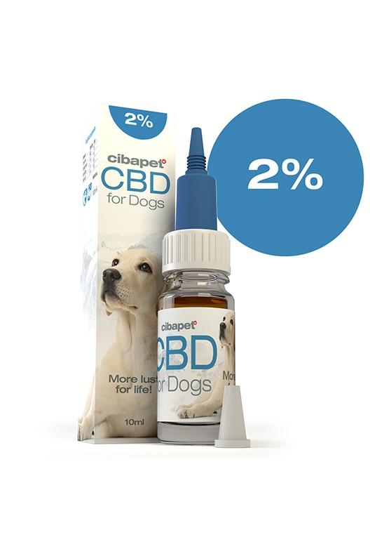 cbd-oil-for-dogs-2