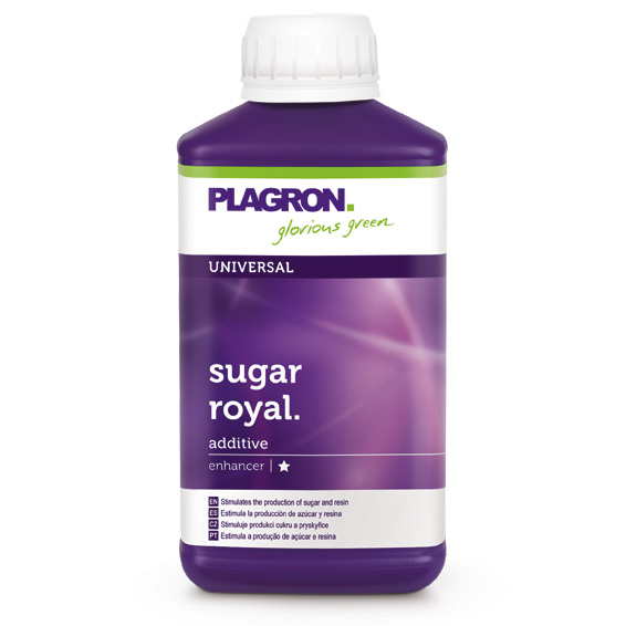 02. Sugar Royal_250ml